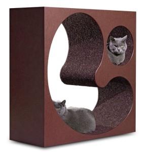 Katzenlounge Schoko