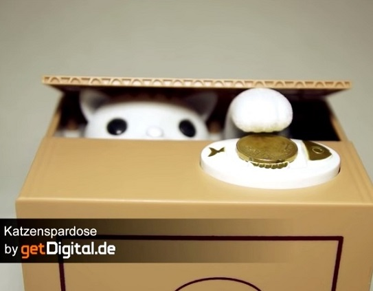 Katzenspardose