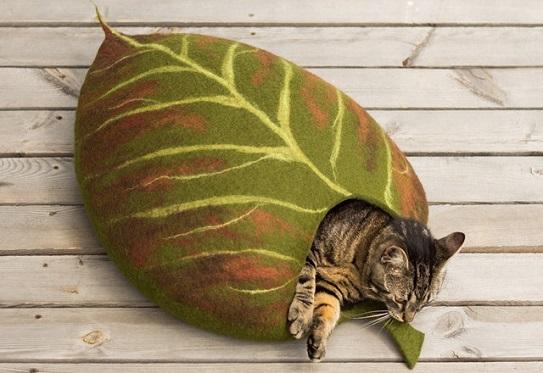 Katzen Blaetterhoehle