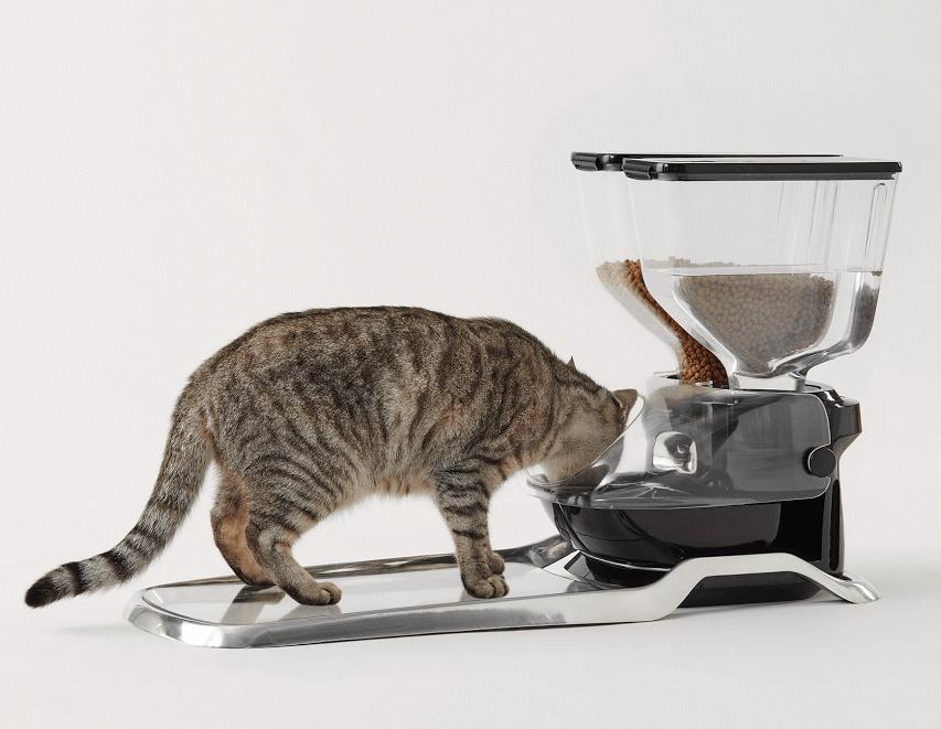 Futterautomat für mehrere Katzen
