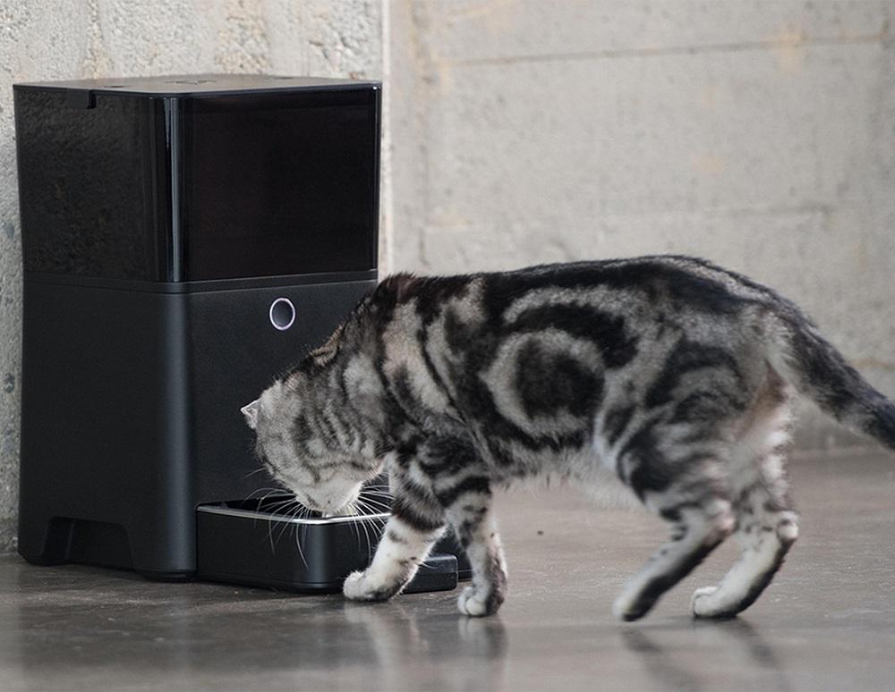 petnet smartfeeder der fernbedienungs futterautomat interessantes f r. Black Bedroom Furniture Sets. Home Design Ideas