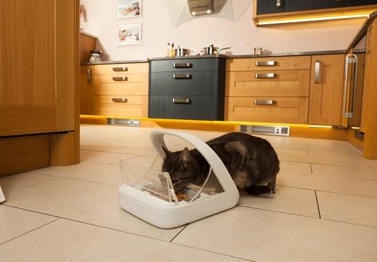 Katzenfutterautomat
