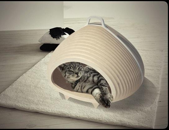 Designer-Katzenhoehle