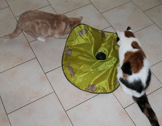 Tchibo Katzenspielzeug