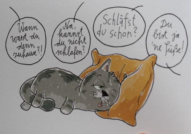 Redewendungen Katze