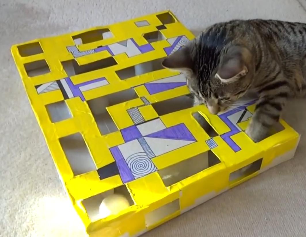 Diy Beschäftigungsspielzeug Für Katzen Katzenblogde