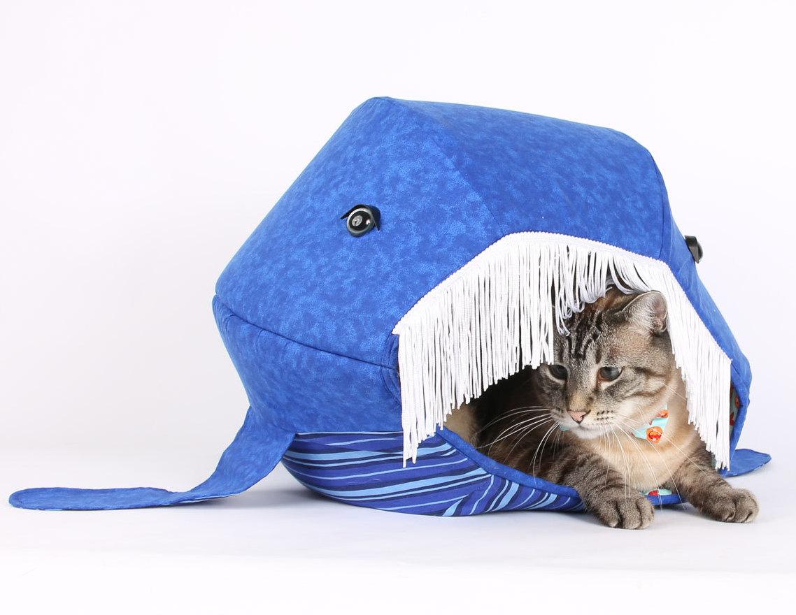 Katzenhoehle Blauwal