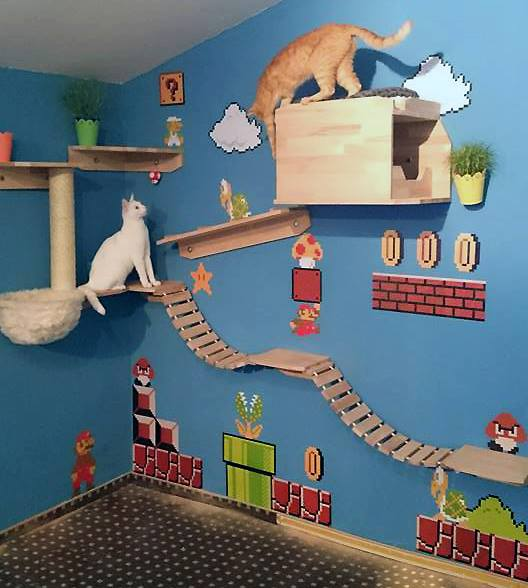 Super Mario Cat Walk