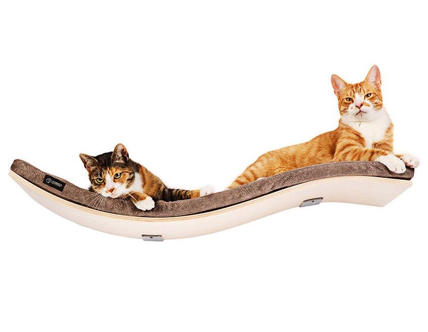 Katzenwandregal