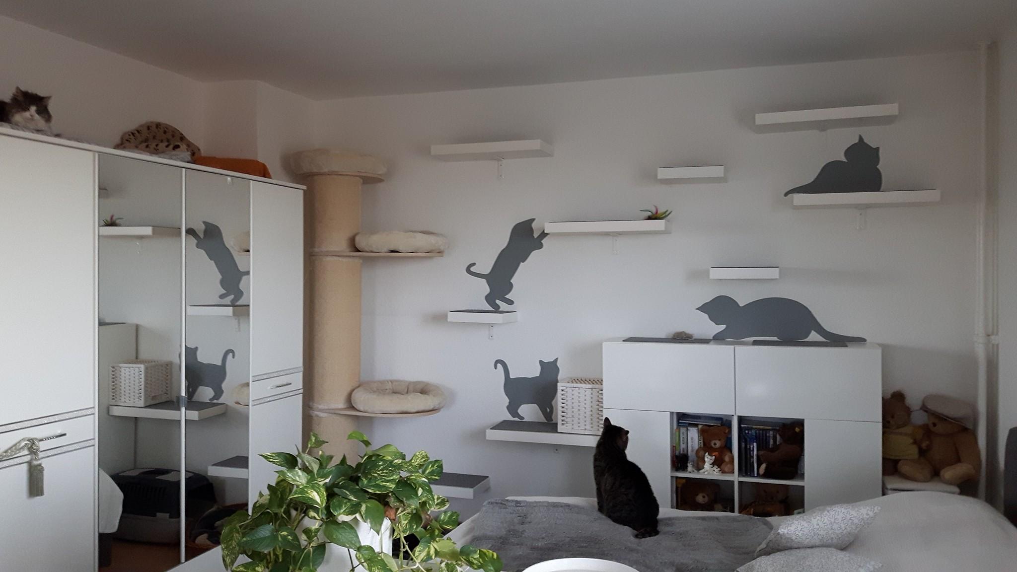 diy cat walk mit ikea lack interessantes f r katzenfreunde. Black Bedroom Furniture Sets. Home Design Ideas