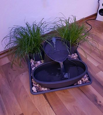 diy katzenbrunnen selber bauen interessantes f r katzenfreunde. Black Bedroom Furniture Sets. Home Design Ideas