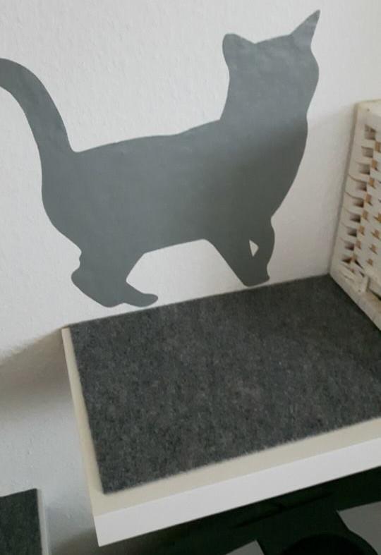 Katzenbrett rutschhemmend