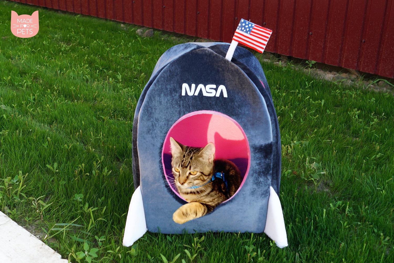 Katzenhoehle Raumschiff