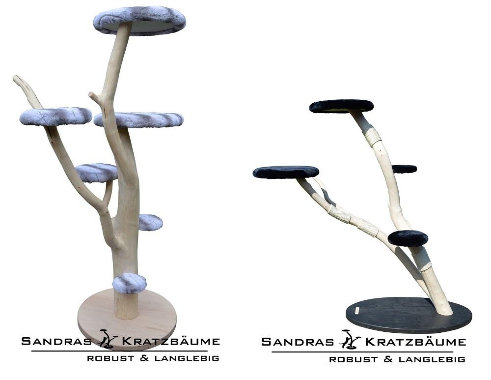 Sandras Kratzbaeume