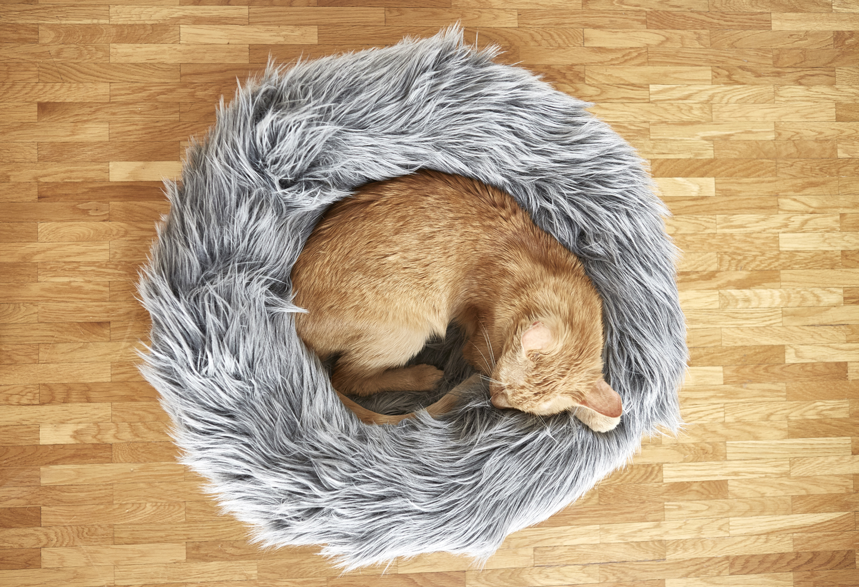 Capello Miacara Kunstfell Donut Katzenbett