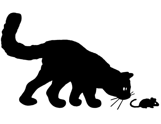 Katze Maus