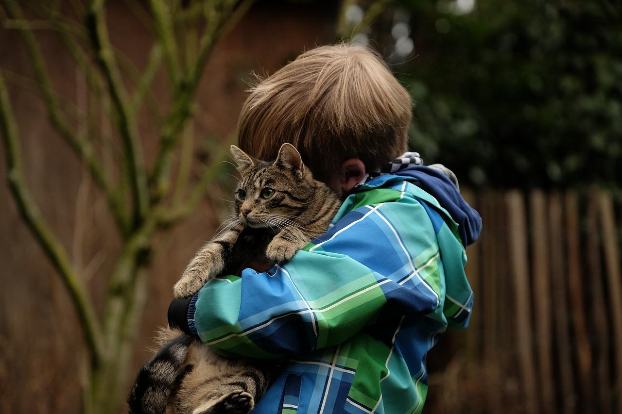 Tierschutzlehrerausbildung