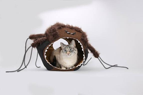 gruseliges Katzenbett