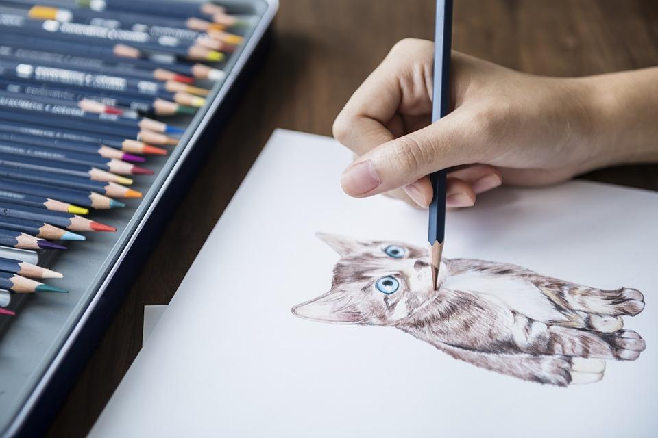Katze zeichnen realistisch