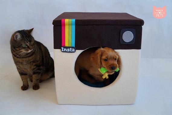 Katzenhoehle Instagram