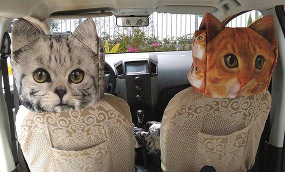 Autokopfstuetzen Bezuege Katze