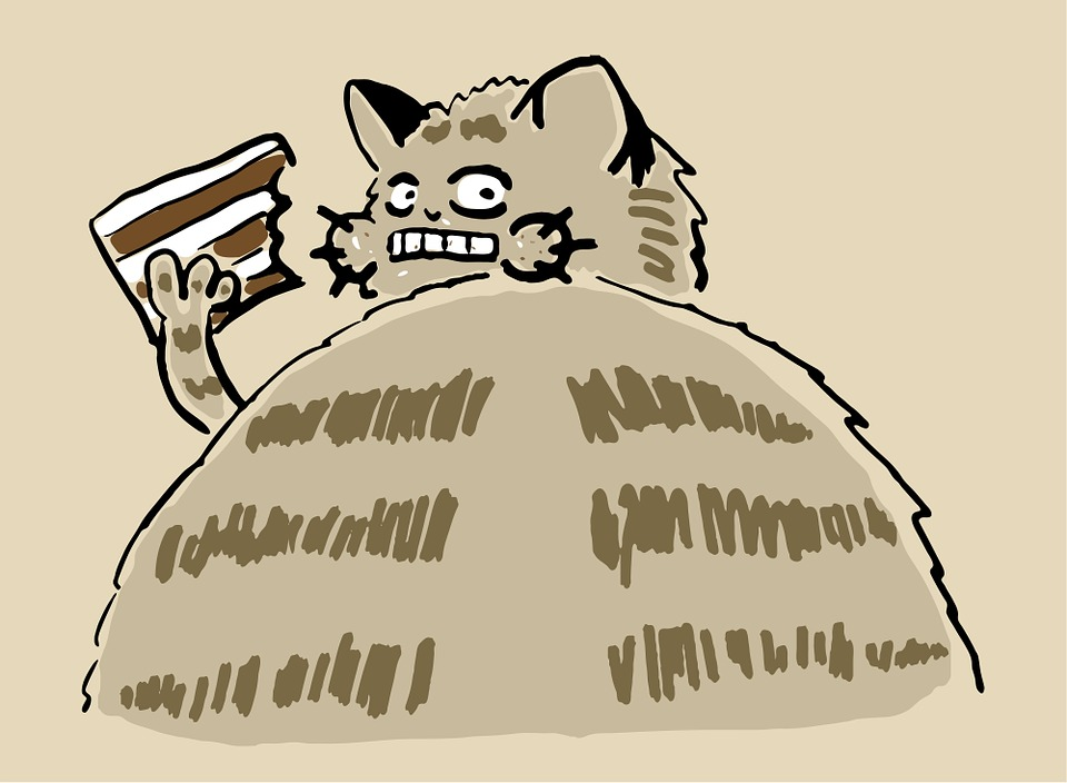 Katzen Motivtorte Pusheen