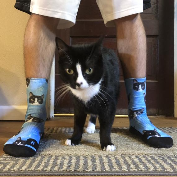Socken mit eigener Katze