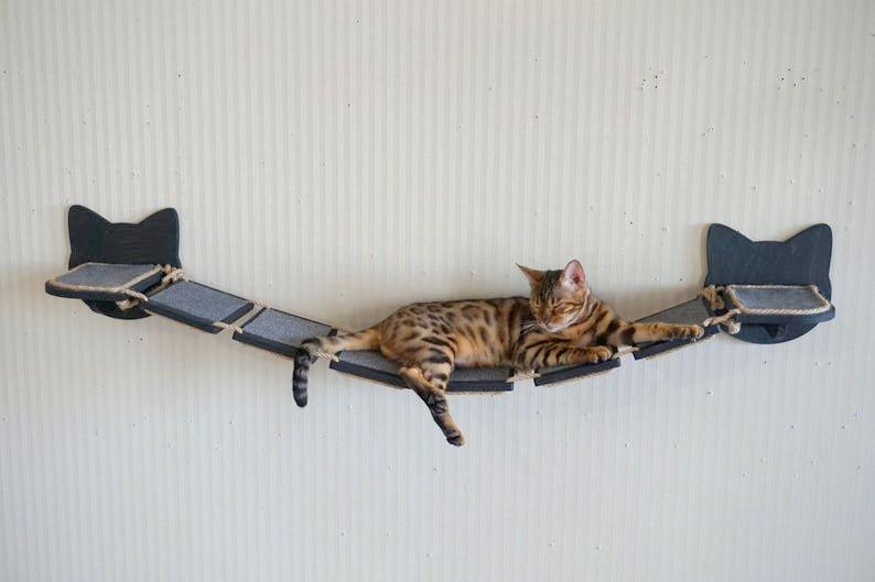 Bruecke klettern Katze
