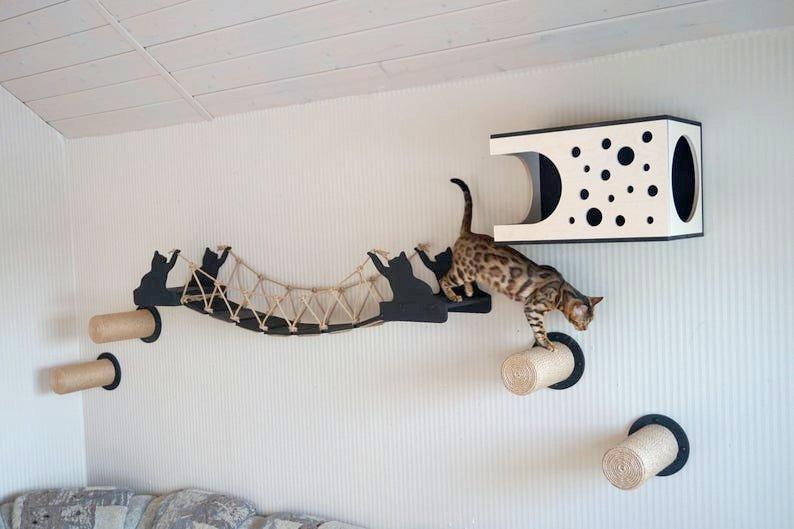 Katzenkletterwand