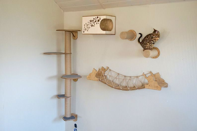 Kletterwand Katzen