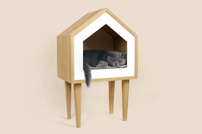 Katzenhaus auf Stelzen