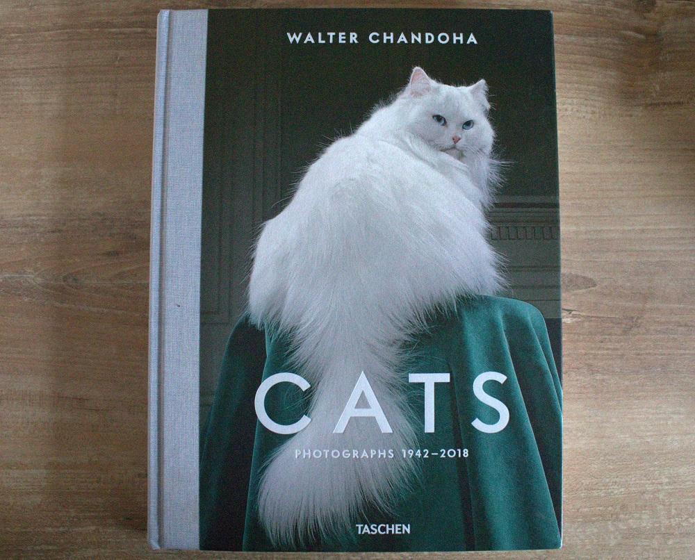 CATS Bildband