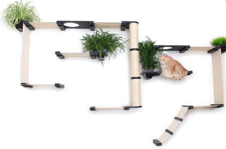 Cat Walk mit Pflanzen