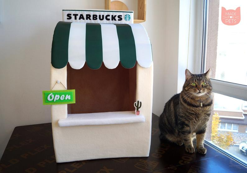 Starbucks Katzenhoehle