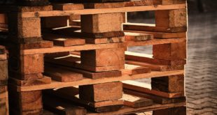 Katzenhoehle aus Palettenholz