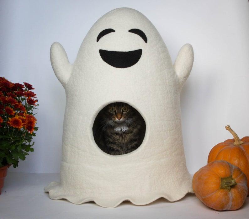Katzenhoehle Filz Geist